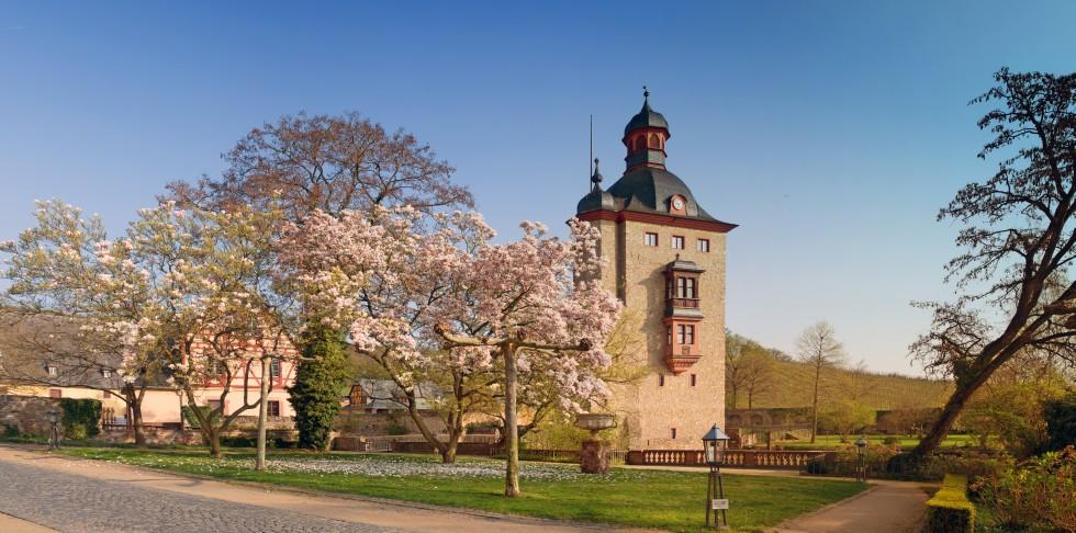 Schloss Vollrads Oestrich Winkel Rheingau