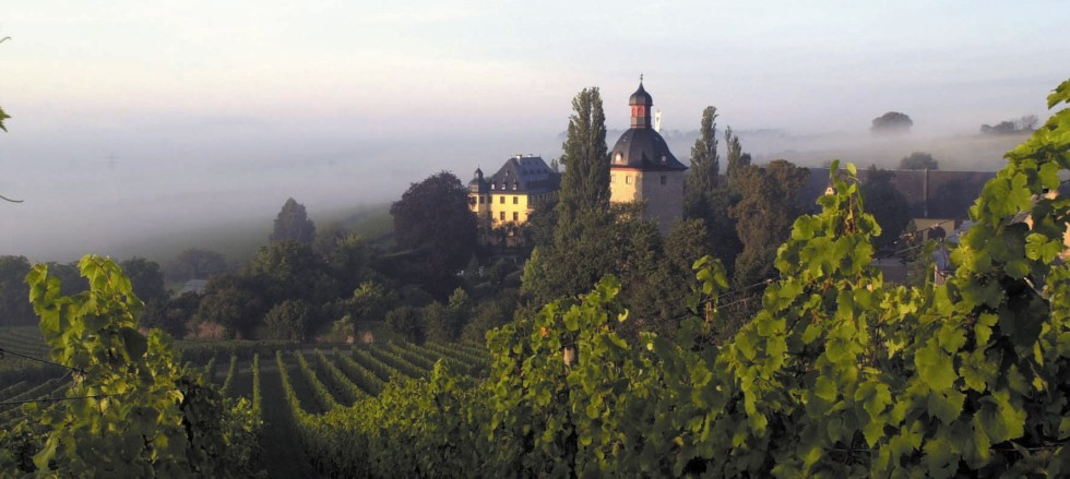 Weingüter Schloss Vollrads Weine