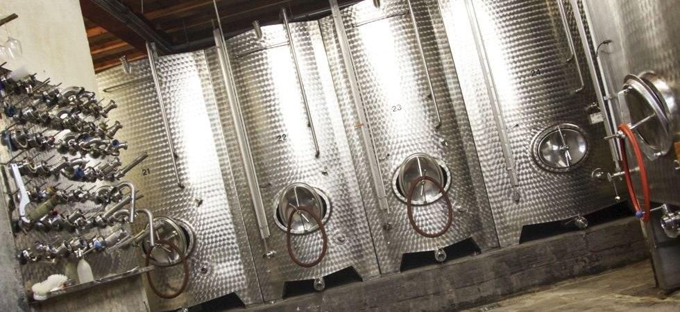 Von den Riesling-Trauben ins Weinsortiment.
