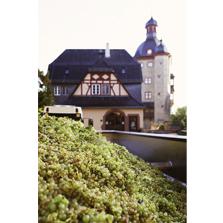 SchlossVollrads_Wein_6_Vorschau